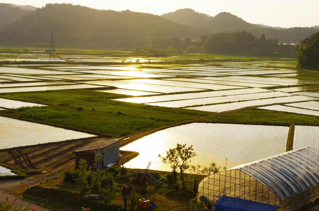 Les panneaux solaires révolutionnent Avallon