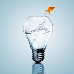 ampoule qui sert de bocal à poisson